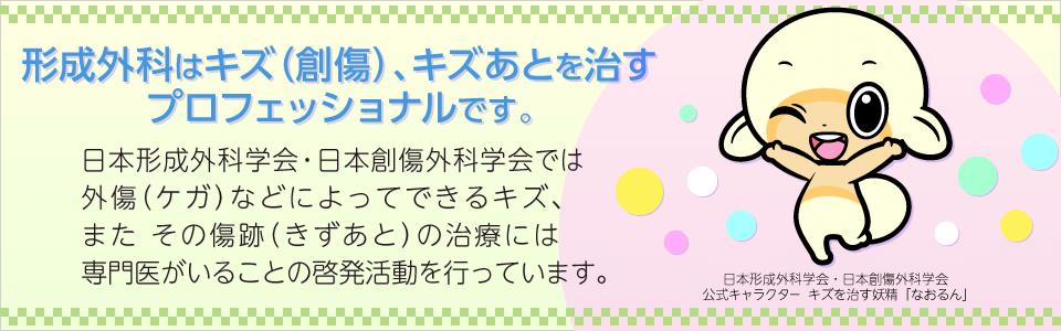 一般社団法人 日本形成外科学会